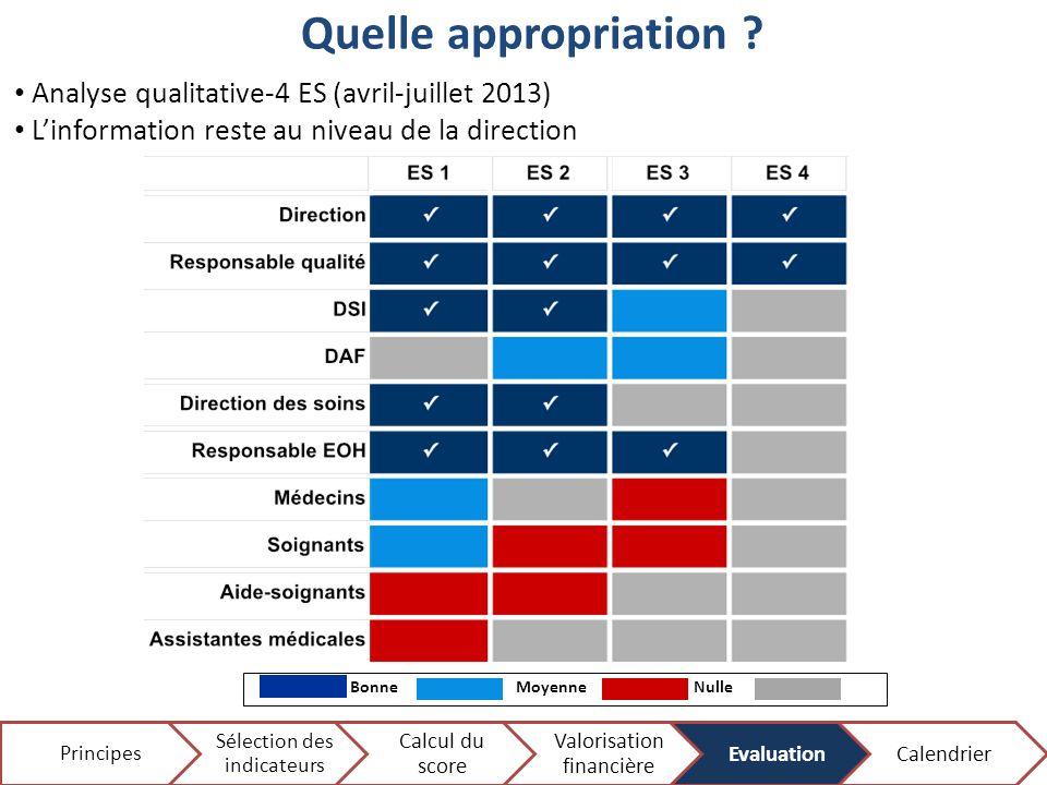 Quelle appropriation Analyse qualitative-4 ES (avril-juillet 2013)