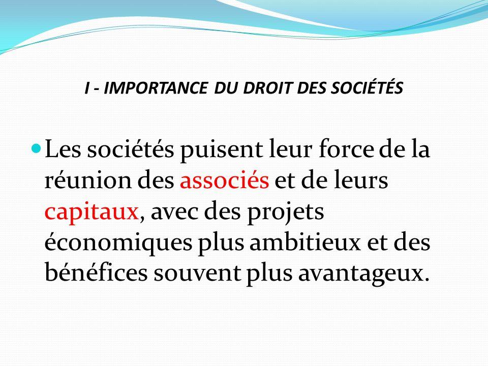 I - IMPORTANCE DU DROIT DES SOCIÉTÉS