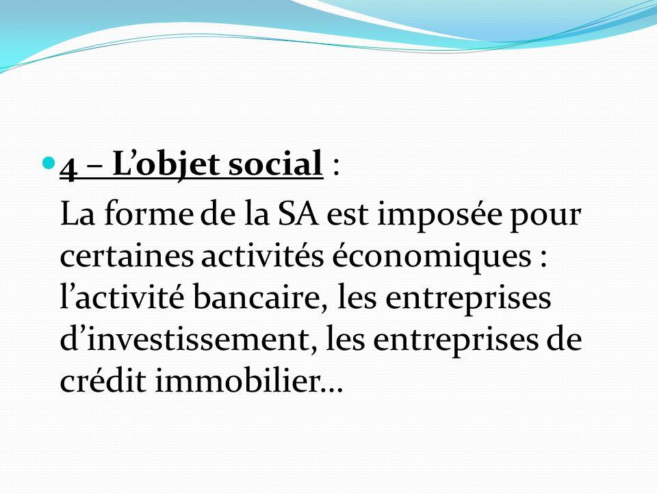4 – L'objet social :