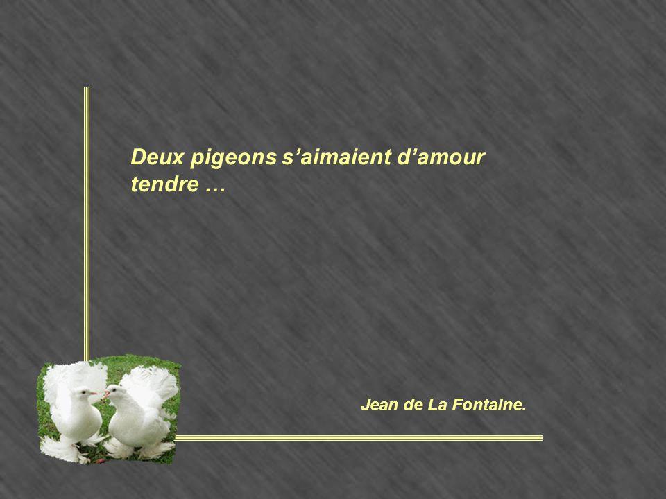 Deux pigeons s'aimaient d'amour tendre …