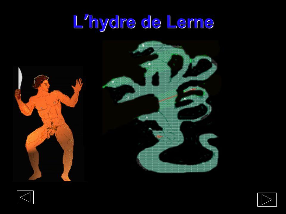 L'hydre de Lerne