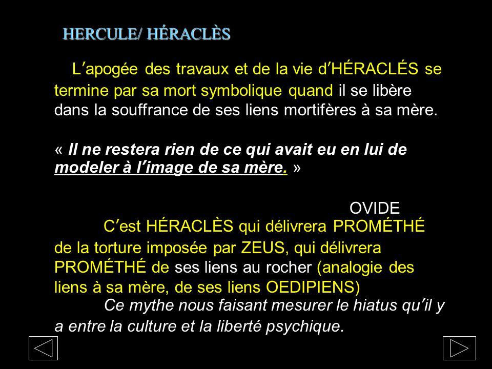 HERCULE/ HÉRACLÈS