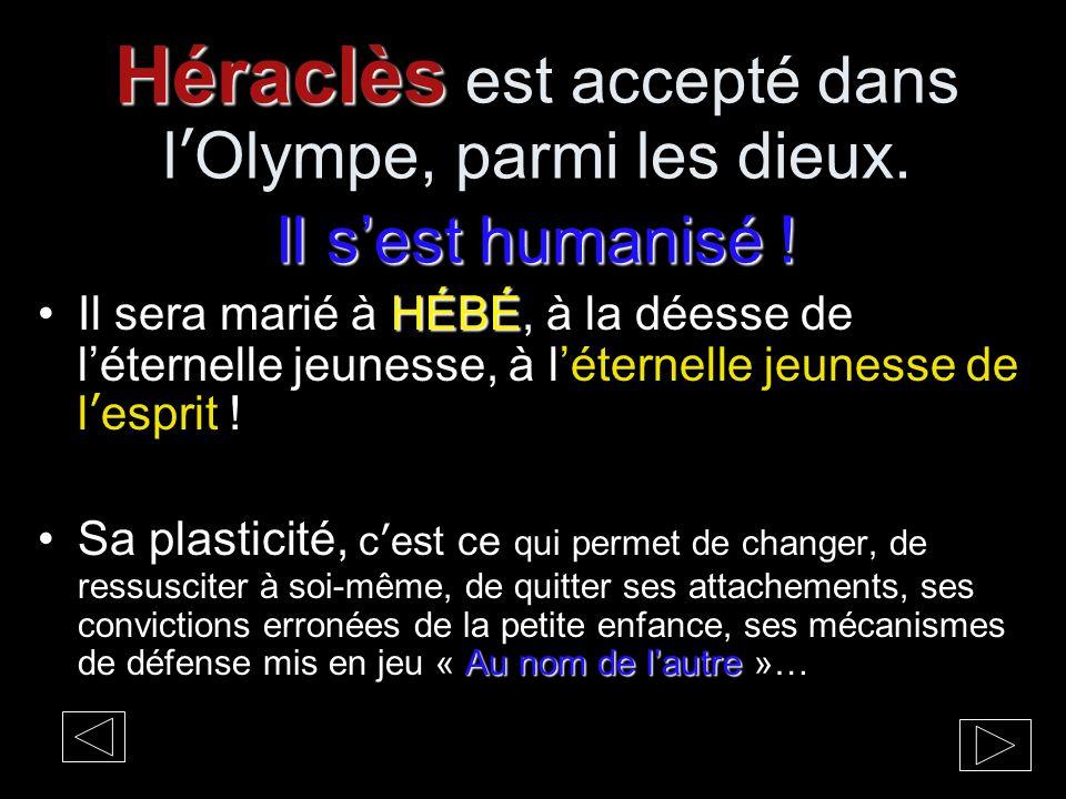 Héraclès est accepté dans l'Olympe, parmi les dieux. Il s'est humanisé !