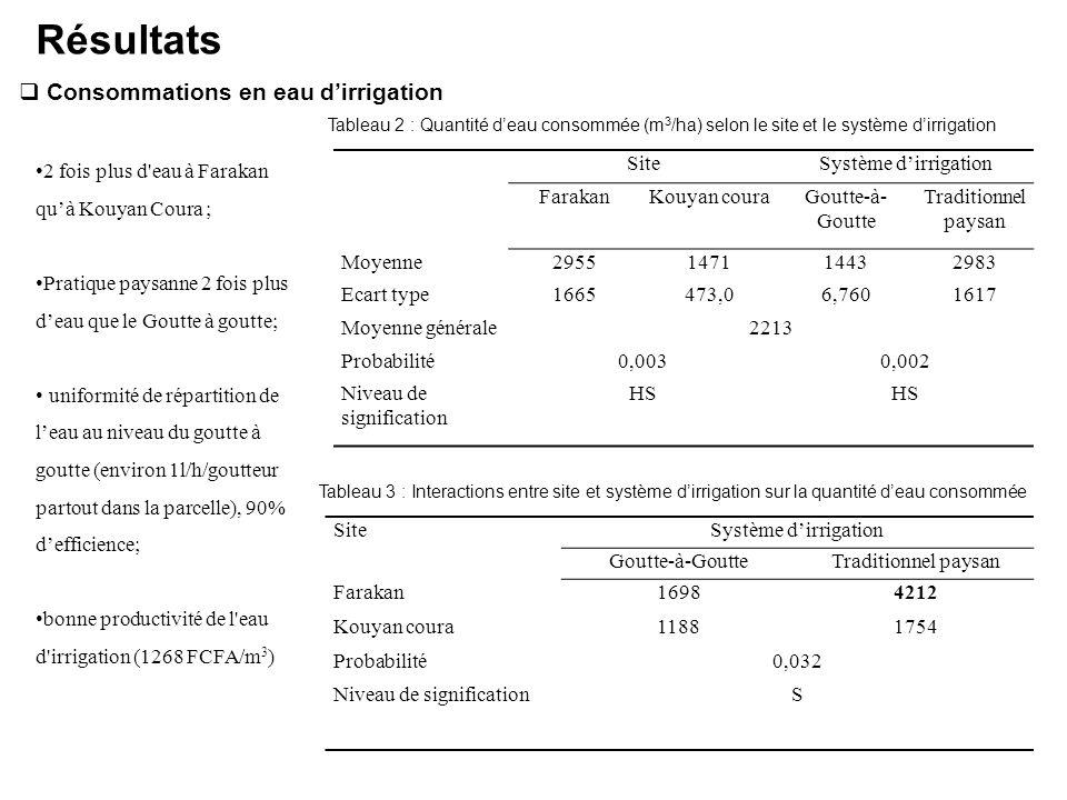 Résultats Consommations en eau d'irrigation
