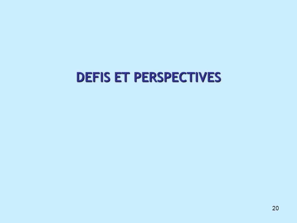 DEFIS ET PERSPECTIVES 20