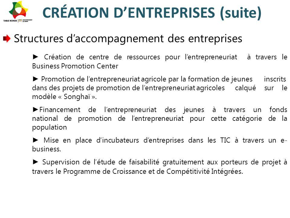 CRÉATION D'ENTREPRISES (suite)