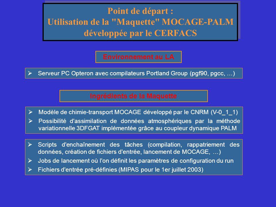 Utilisation de la Maquette MOCAGE-PALM développée par le CERFACS