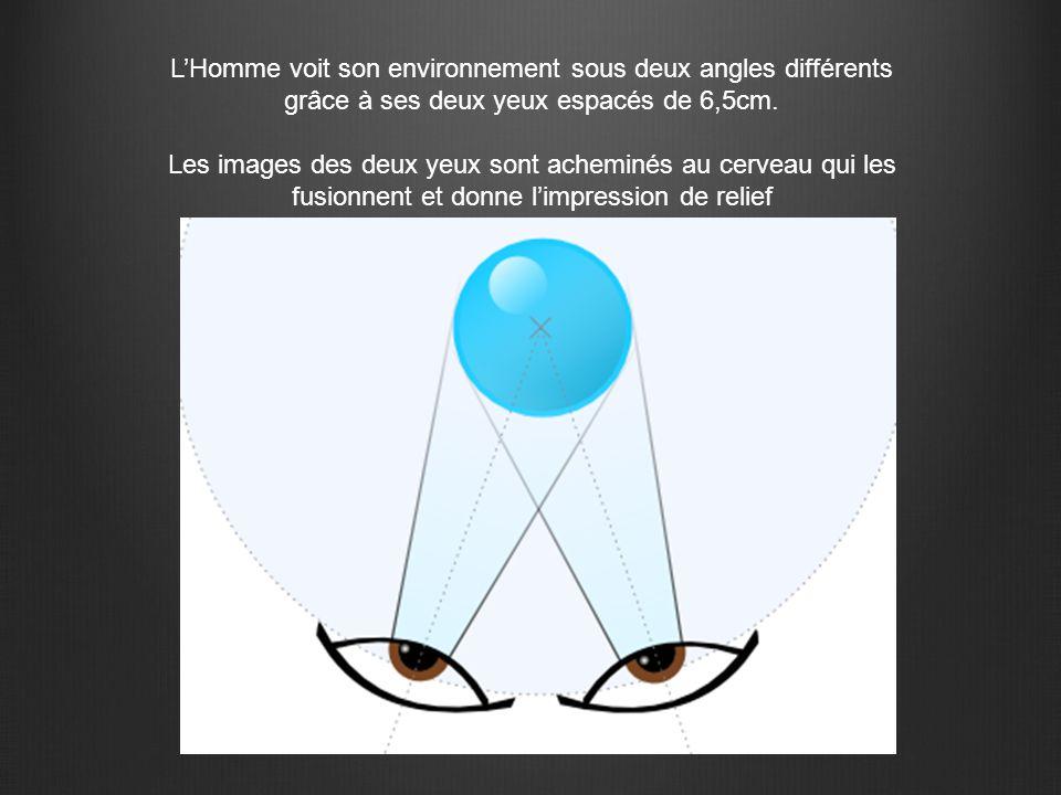 L'Homme voit son environnement sous deux angles différents grâce à ses deux yeux espacés de 6,5cm.