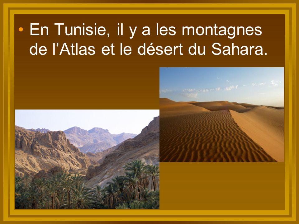 En Tunisie, il y a les montagnes de l'Atlas et le désert du Sahara.