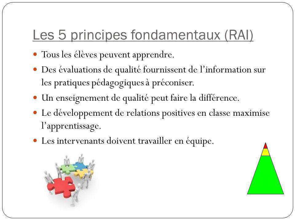 Les 5 principes fondamentaux (RAI)