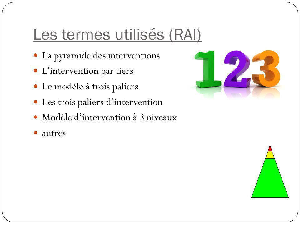 Les termes utilisés (RAI)