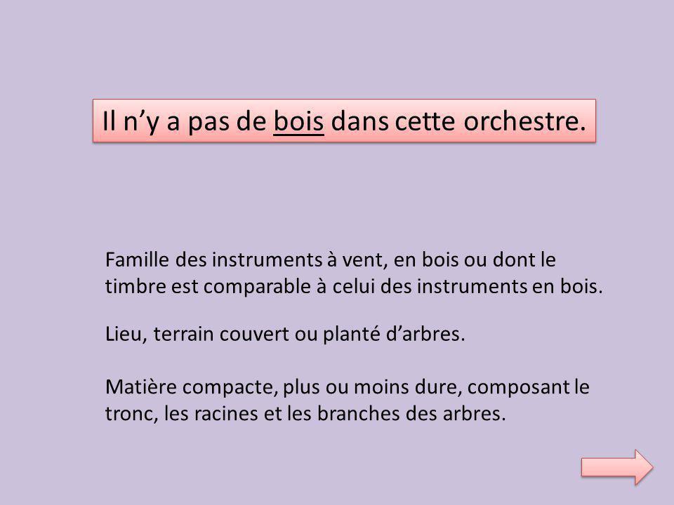 Il n'y a pas de bois dans cette orchestre.