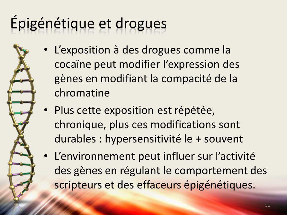 Épigénétique et drogues