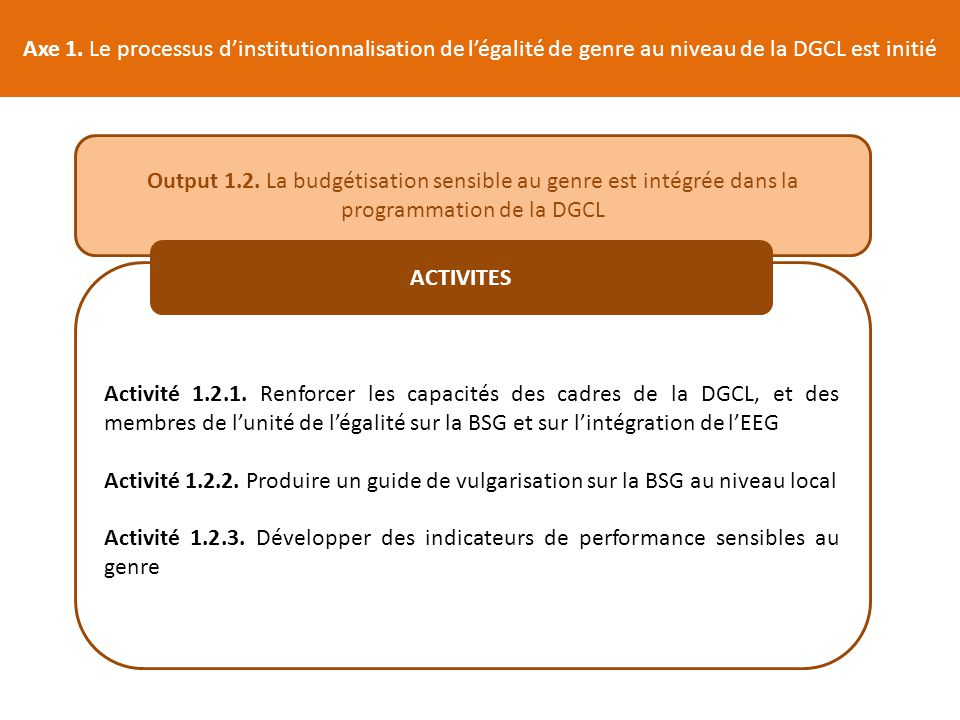 Axe 1. Le processus d'institutionnalisation de l'égalité de genre au niveau de la DGCL est initié