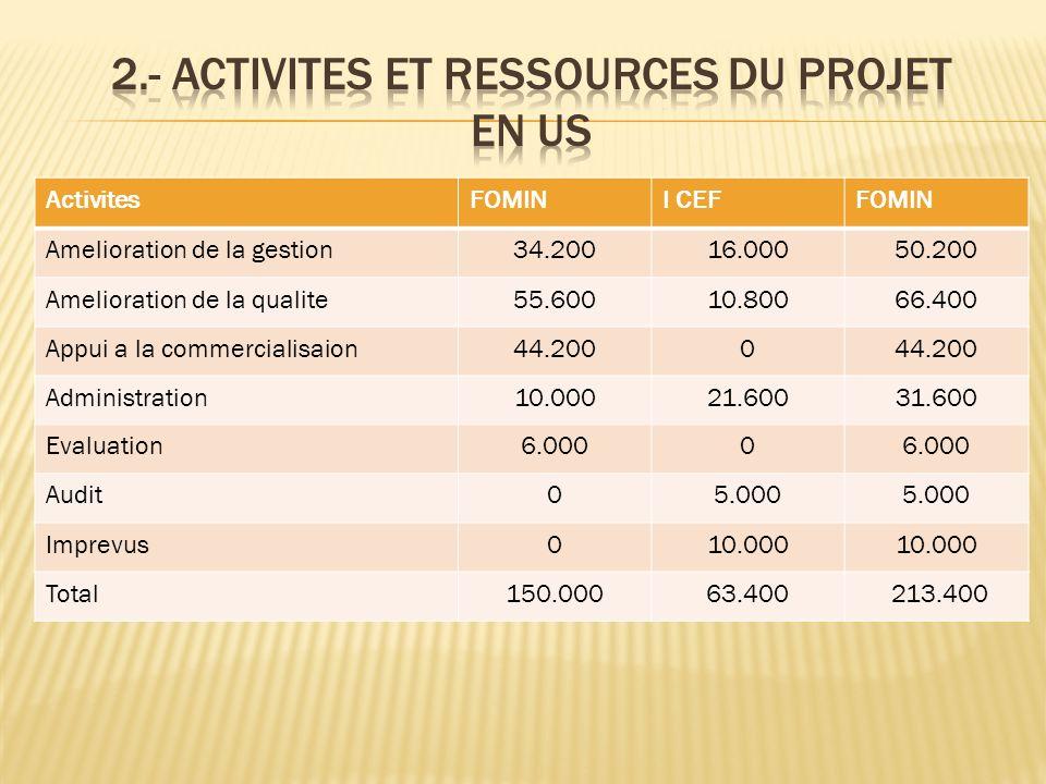 2.- Activites et ressources du projet en US
