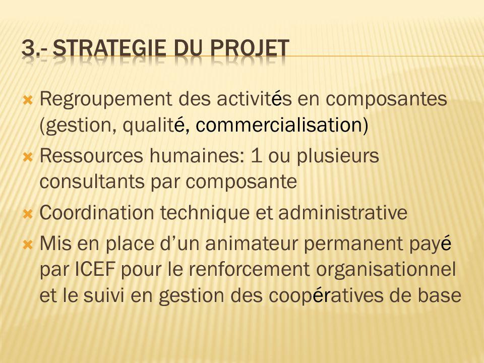 3.- Strategie du projet Regroupement des activités en composantes (gestion, qualité, commercialisation)
