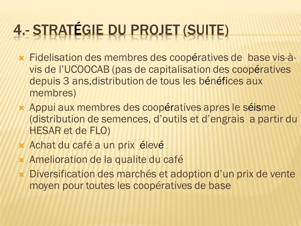 4.- Stratégie du projet (suite)