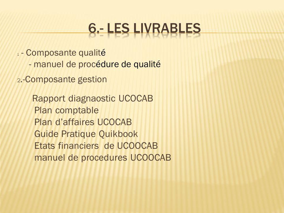 6.- Les livrables Plan comptable Plan d'affaires UCOCAB