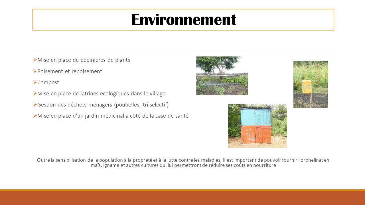 Environnement Mise en place de pépinières de plants