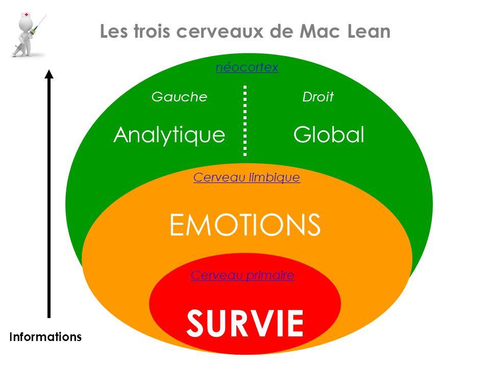 Les trois cerveaux de Mac Lean