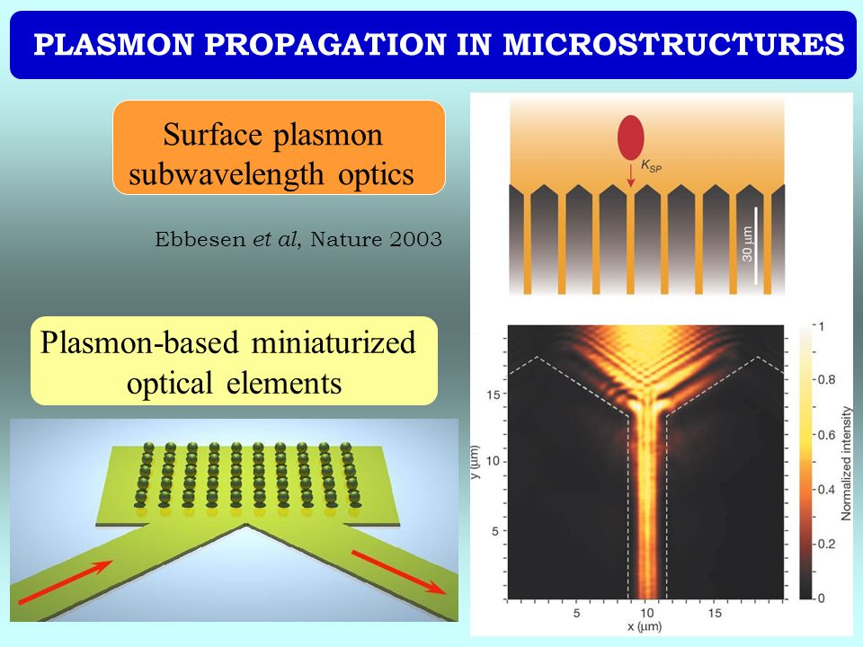 PLASMON PROPAGATION IN MICROSTRUCTURES