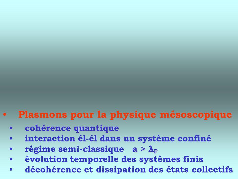 Plasmons pour la physique mésoscopique