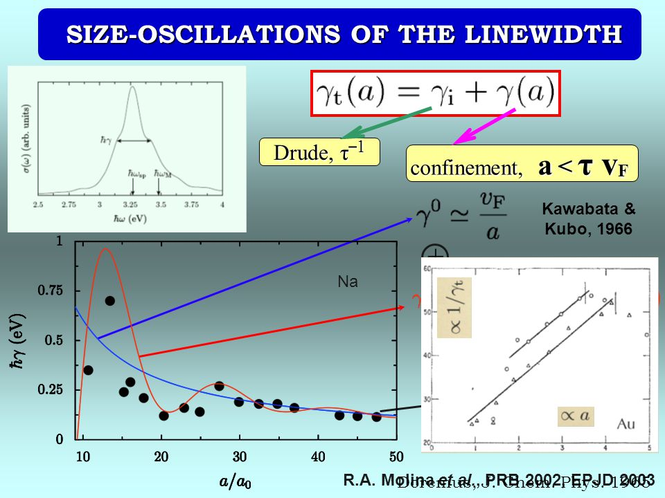 SIZE-OSCILLATIONS OF THE LINEWIDTH