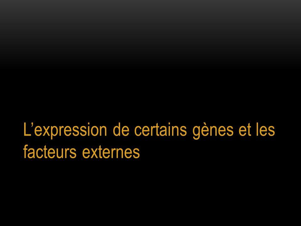 L'expression de certains gènes et les facteurs externes