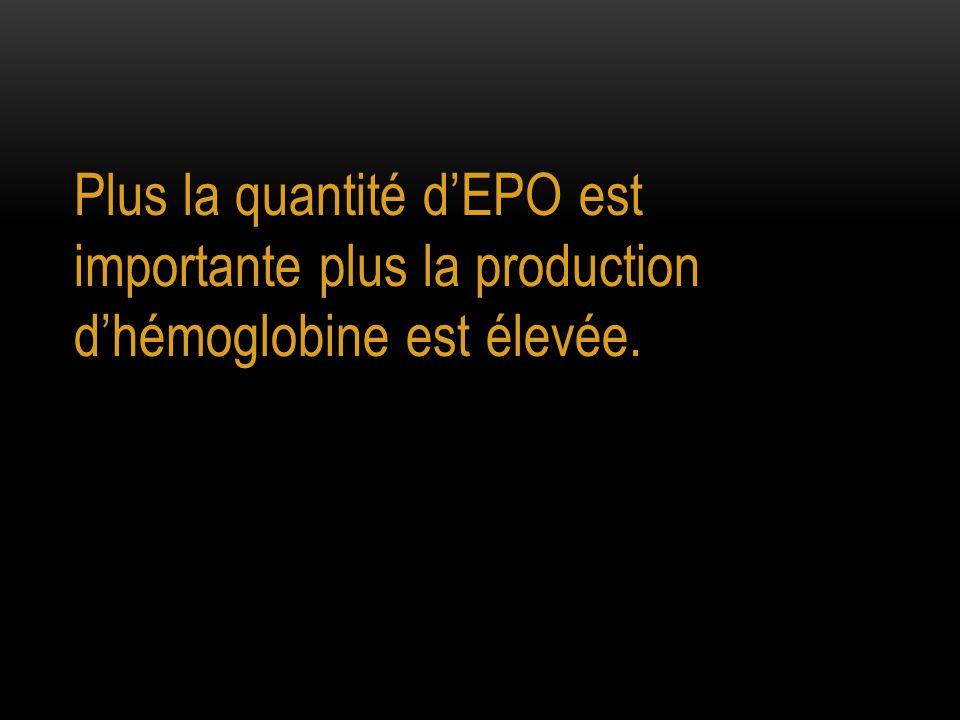 Plus la quantité d'EPO est importante plus la production d'hémoglobine est élevée.