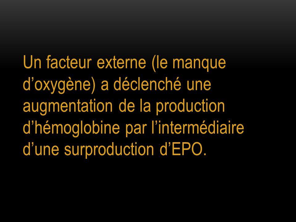 Un facteur externe (le manque d'oxygène) a déclenché une augmentation de la production d'hémoglobine par l'intermédiaire d'une surproduction d'EPO.