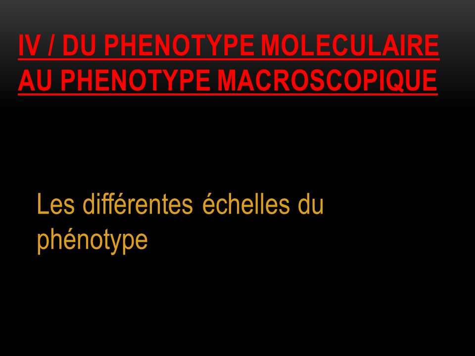 Iv / du phenotype moleculaire au phenotype macroscopique