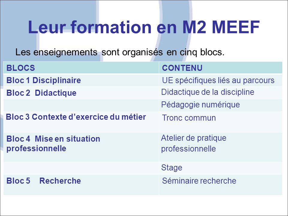Leur formation en M2 MEEF