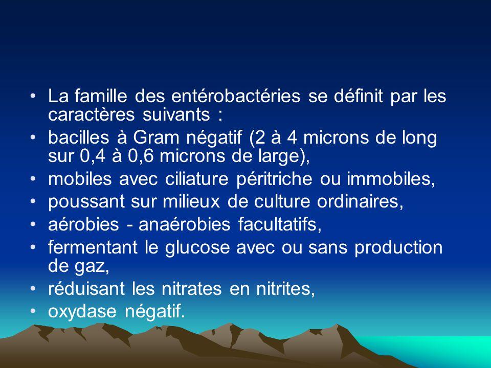 La famille des entérobactéries se définit par les caractères suivants :