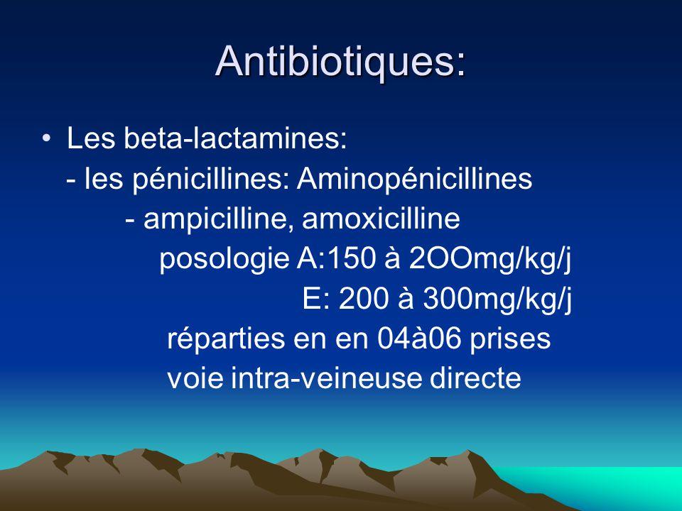 Antibiotiques: Les beta-lactamines: