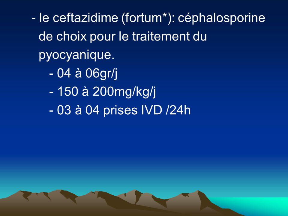 - le ceftazidime (fortum*): céphalosporine