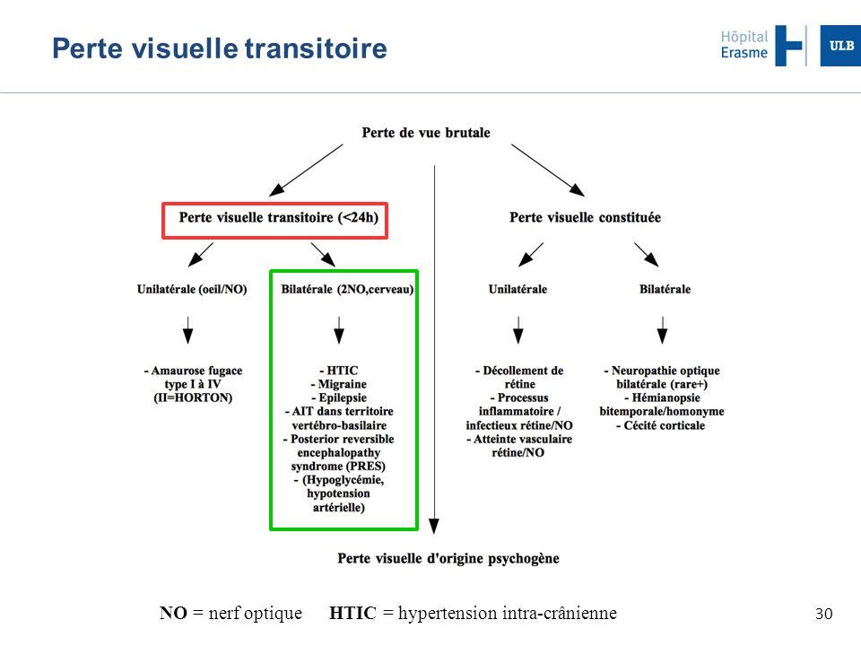 Perte visuelle transitoire
