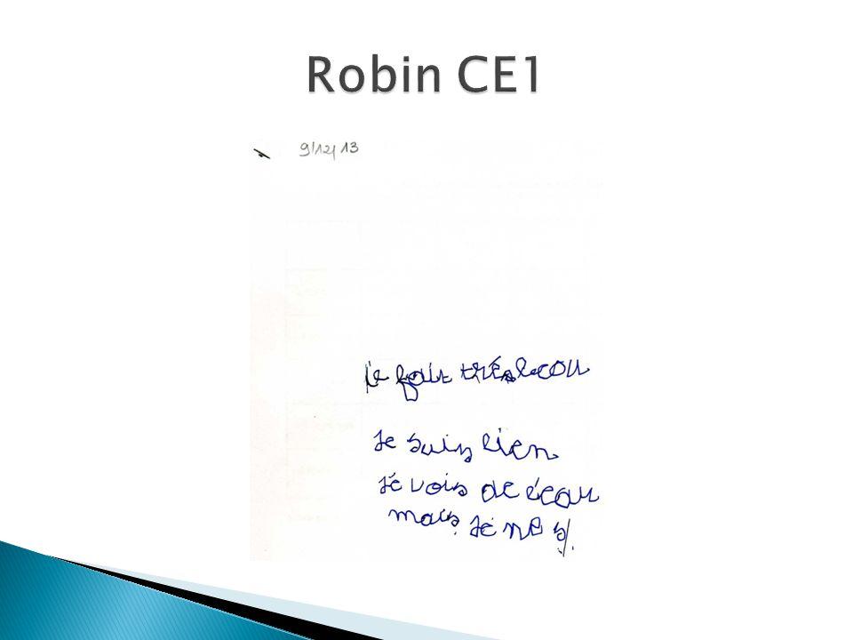 Robin CE1