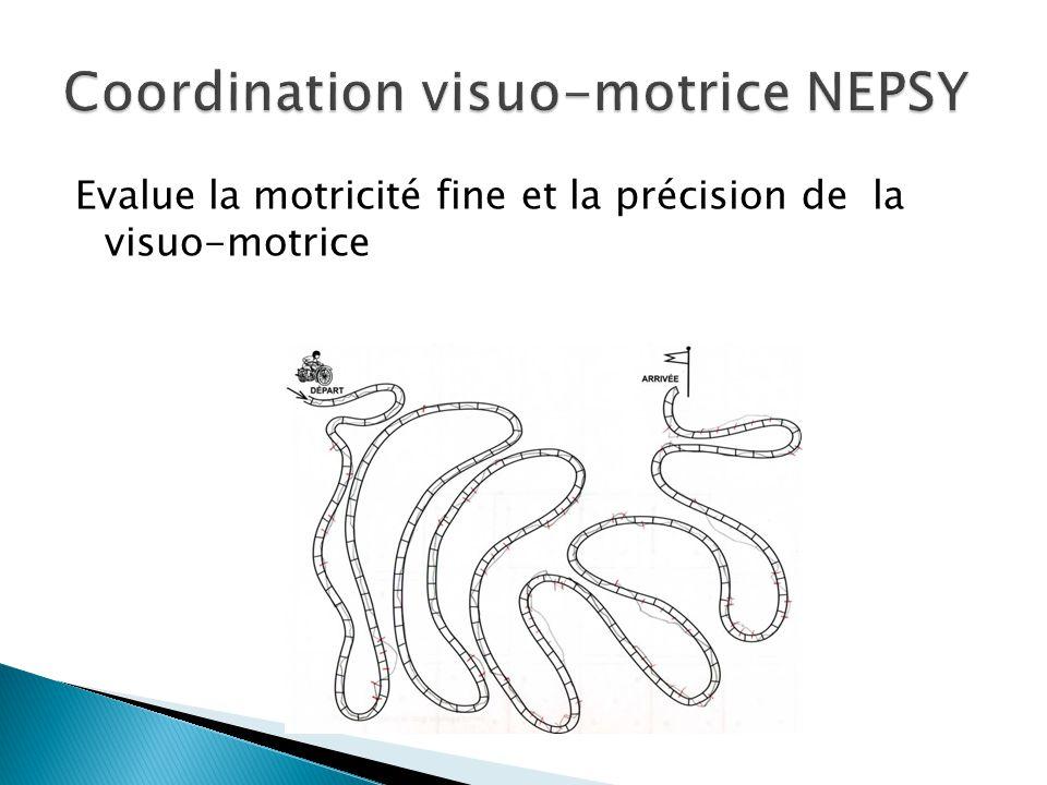 Coordination visuo-motrice NEPSY