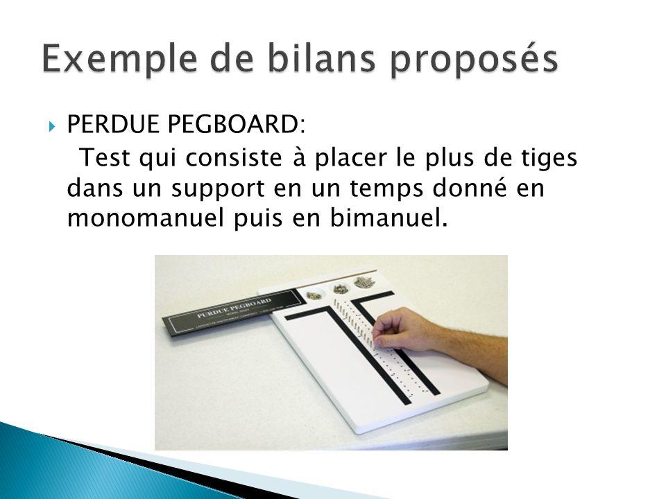 Exemple de bilans proposés
