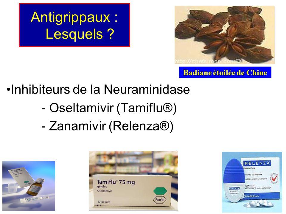Antigrippaux : Lesquels