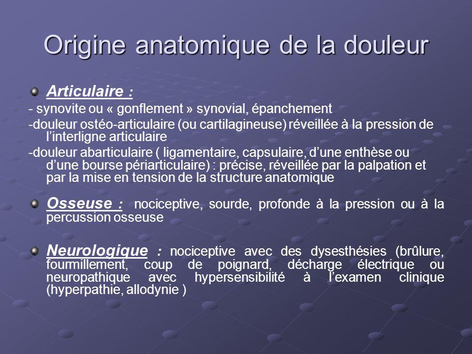 Origine anatomique de la douleur