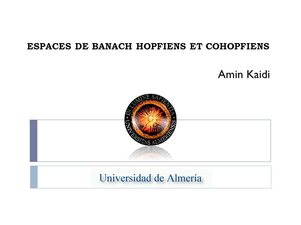 ESPACES DE BANACH HOPFIENS ET COHOPFIENS