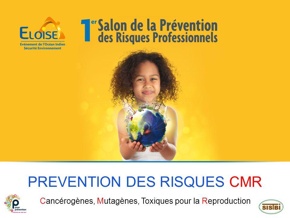 PREVENTION DES RISQUES CMR Cancérogènes, Mutagènes, Toxiques pour la Reproduction