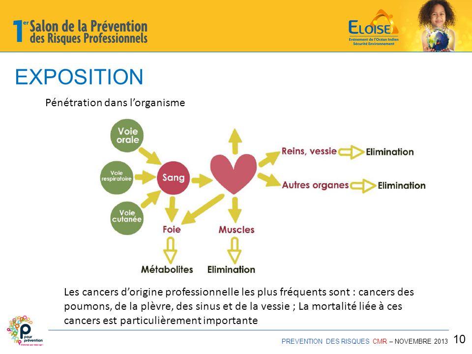 EXPOSITION Pénétration dans l'organisme
