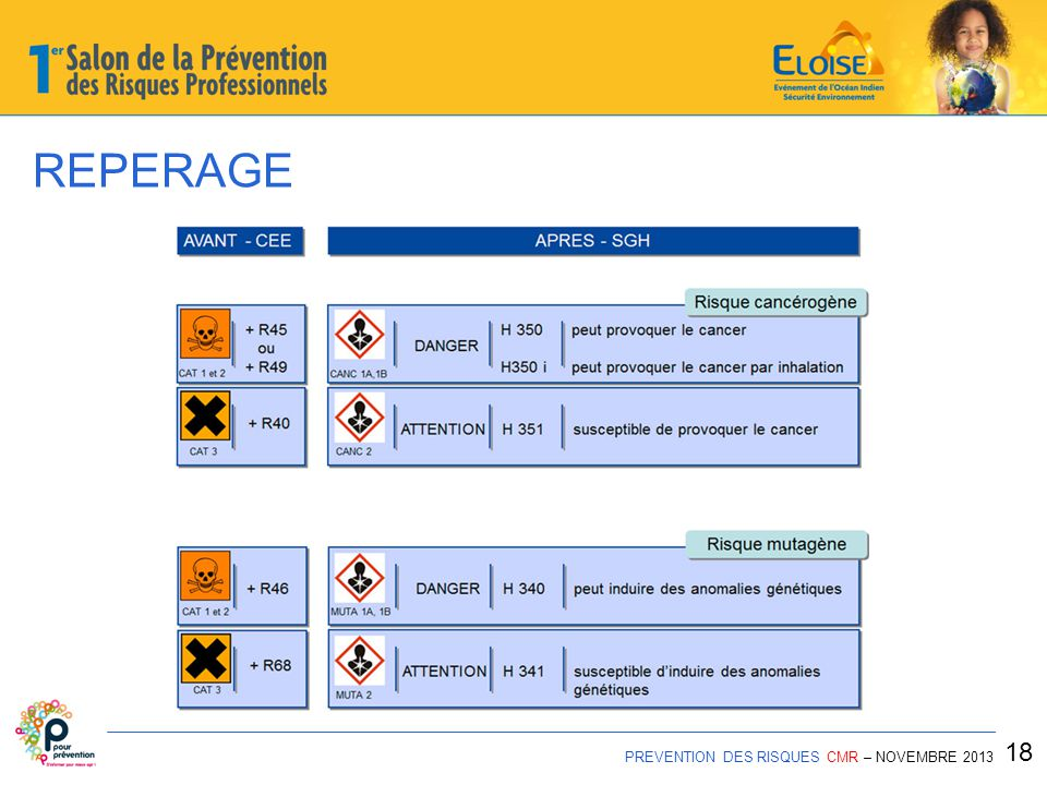 REPERAGE 18 PREVENTION DES RISQUES CMR – NOVEMBRE 2013