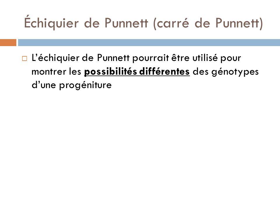 Échiquier de Punnett (carré de Punnett)