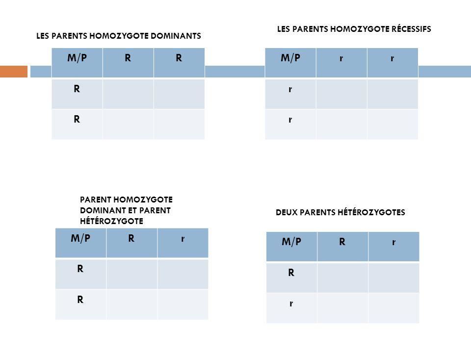 M/P R M/P r M/P R r M/P R r LES PARENTS HOMOZYGOTE RÉCESSIFS