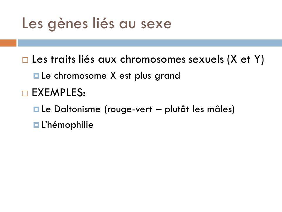 Les gènes liés au sexe Les traits liés aux chromosomes sexuels (X et Y) Le chromosome X est plus grand.