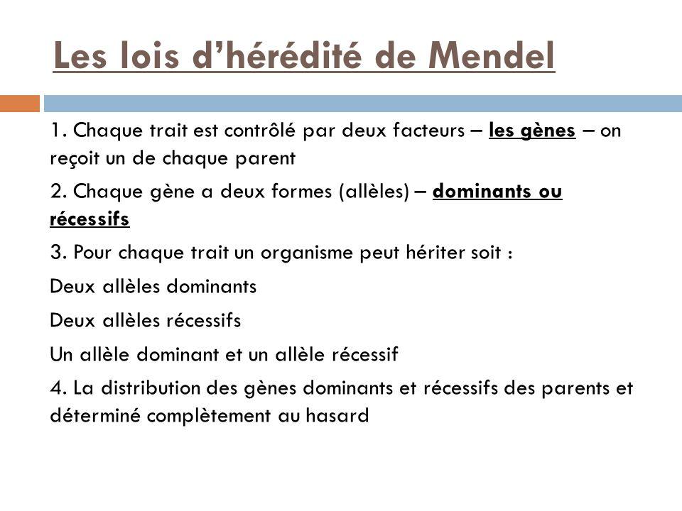 Les lois d'hérédité de Mendel