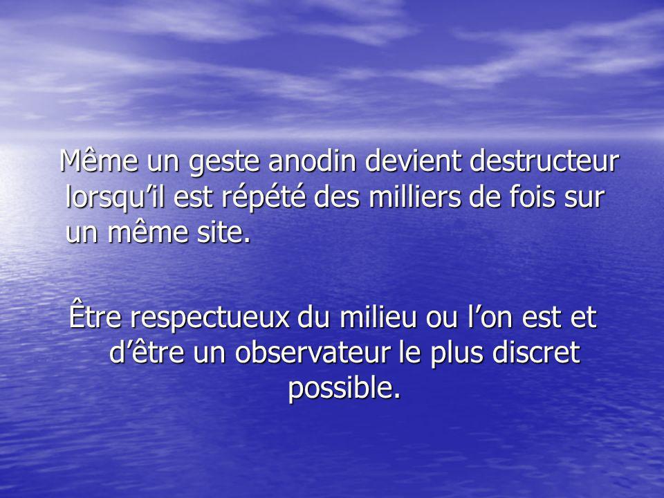 Même un geste anodin devient destructeur lorsqu'il est répété des milliers de fois sur un même site.